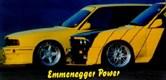 Emmenegger Power Alpnach Dorf